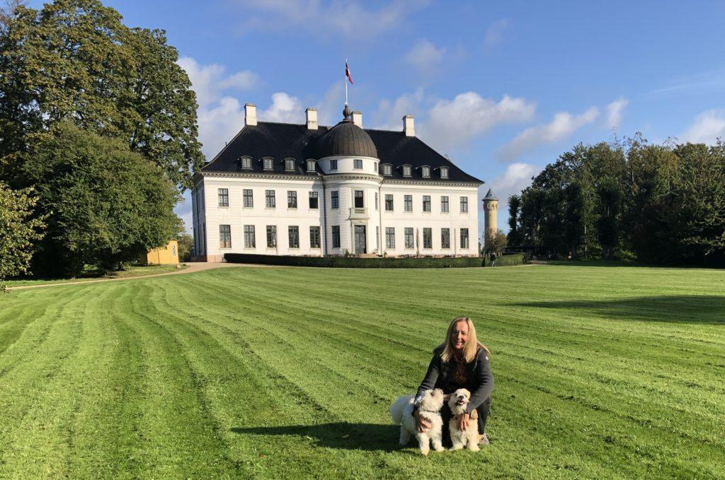 Lene Bojer, Psykoterapeut i København